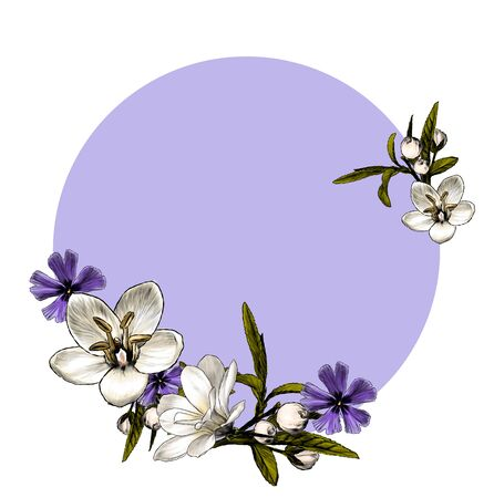 round frame with a frame of flowers sketch vector graphics color illustration on a white background Иллюстрация
