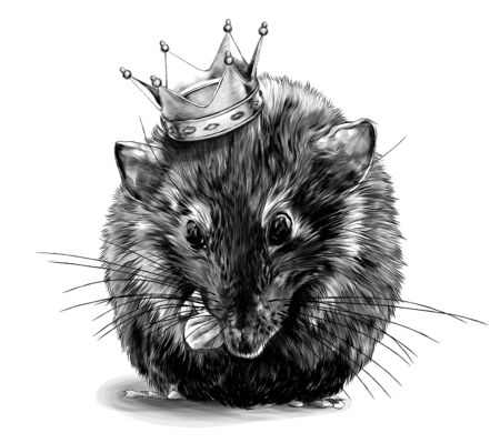 cute mouse sitting between his legs and front paws with a crown on his head, sketch vector graphics monochrome illustration on white background