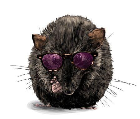 cute mouse sitting cross-legged in fashionable round youth glasses, sketch vector graphics color illustration on white background Ilustração