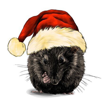 cute mouse sitting with his front paws tucked in a big Christmas hat with fur on his head, sketch vector graphics color illustration on a white background