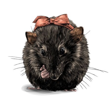 cute mouse girl sitting with her front paws tucked in with a bow on her head, sketch vector graphics color illustration on white background