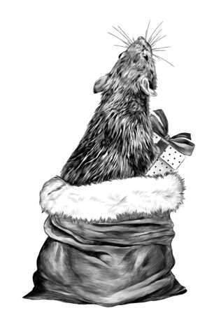 mouse with gift box in paws climbs out of Christmas bag and standing on his hind legs looking up with his back turned, sketch vector graphics monochrome illustration on white background