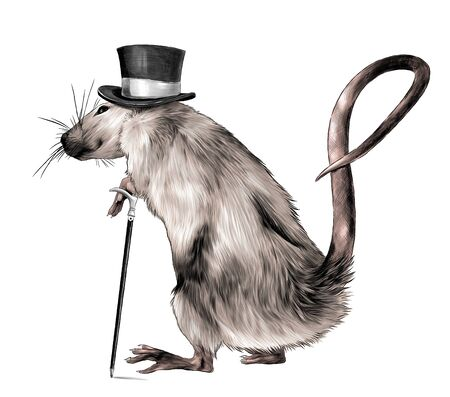 mouse gentleman in hat and with cane in paws standing on hind legs full length turned sideways sketch vector graphics color illustration on white background