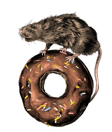 the mouse is standing and riding on a donut in the chocolate, confectionery topping, sketch vector graphics color illustration on white background