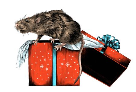 mouse sitting on Christmas gift box, sketch vector graphics color illustration on white background