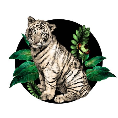 baby white tiger sitting full length and looking straight at the background composition of tropical leaves, sketch vector graphics color illustration on white background