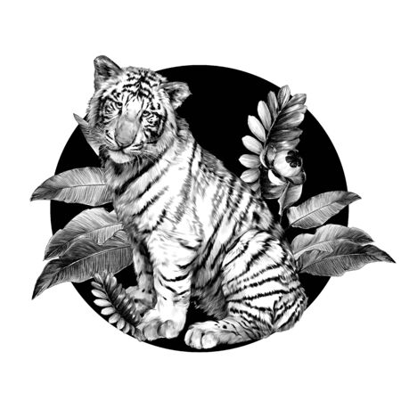 baby tiger sitting full length and looking straight at the background composition of tropical leaves, sketch vector graphics monochrome illustration on white background
