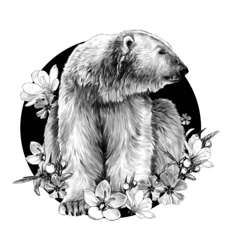 polar bear sitting at full height and looking away composition in the form of a circle with flowers around, sketch vector graphics monochrome illustration on a white background