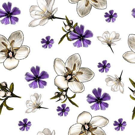 seamless pattern with image of flowers, sketch vector graphics color illustration on white background