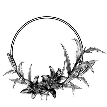 round frame decorated with flowers Lily Bud blooming and leaves, sketch vector illustration in graphic style on white background