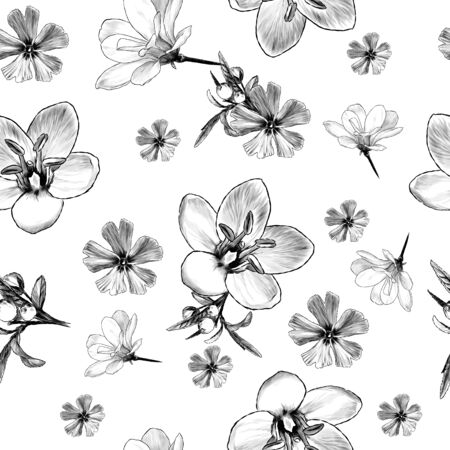 seamless pattern with image of flowers, sketch vector graphics monochrome illustration on white background Stock Illustratie