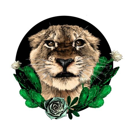 muzzle of a small tiger with a full-face grin on the background of a round composition decorated with flowering cacti, sketch vector graphics color drawing on a white background
