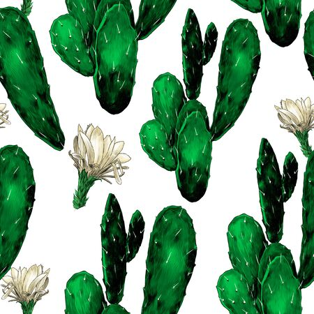 seamless texture with the image of flowering cacti, sketch vector graphics color drawing on a white background