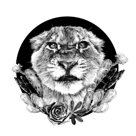 muzzle of a small tiger with a full-face grin on the background of a round composition decorated with flowering cacti, sketch vector graphics monochrome drawing on a white background