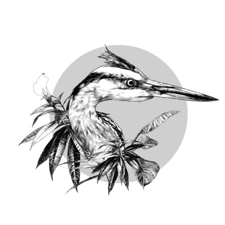 Heron head looks away composition in a circle decorated with bushes with wide leaves and a flower, sketch vector graphics monochrome illustration on a white background