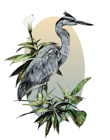 egret stands full-length sideways and looks to the side composition in an oval painted with bushes with wide leaves and a flower, sketch vector graphics color illustration on a white background
