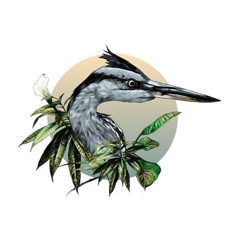 Heron head looks away composition in a circle decorated with bushes with wide leaves and a flower, sketch vector graphics color illustration on a white background