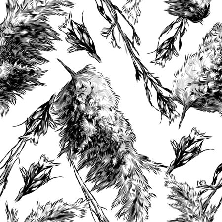 seamless pattern with images of dry grass and fluffy autumn plants, sketch vector graphics monochrome illustration on a white background