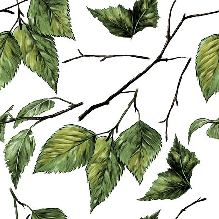 seamless pattern texture with birch branches and leaves, sketch vector graphics color illustration on a white background Иллюстрация