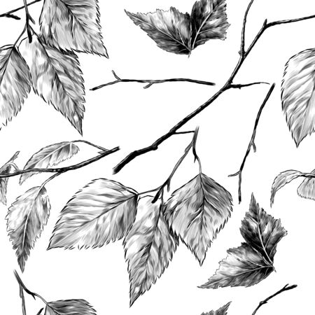 seamless pattern texture with birch branches and leaves, sketch vector graphics monochrome illustration on a white background