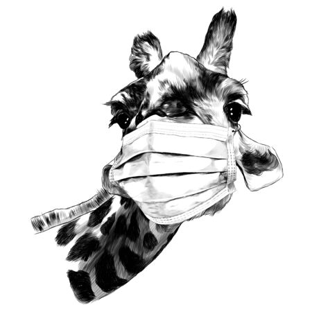face of a giraffe in a medical mask from a virus, sketch vector graphics monochrome illustration on a white background Иллюстрация
