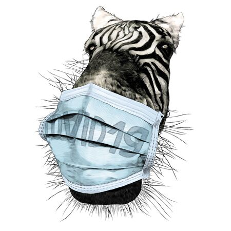 Zebra face nose and mouth close-up looking at the camera strong perspective with a medical mask against the virus, sketch vector graphics color illustration on a white background Illustration