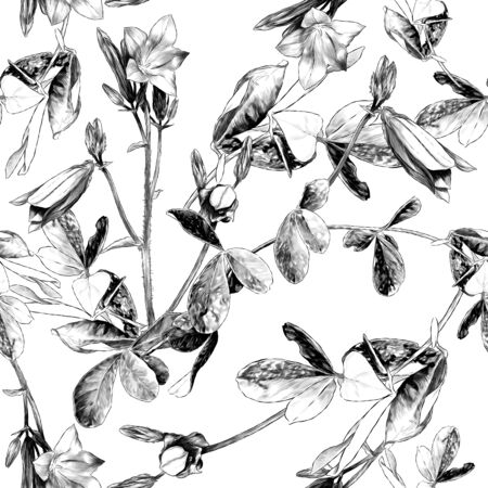seamless texture with the image of plants a sprig of a bell flower with open buds and a blade of grass with leaves, sketch vector graphics monochrome illustration on a white background