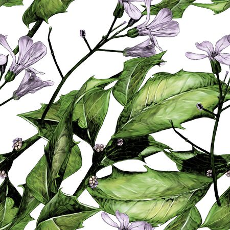seamless texture with the image of a twig with prickly leaves and purple flowers, sketch graphics color illustration on a white background Ilustração