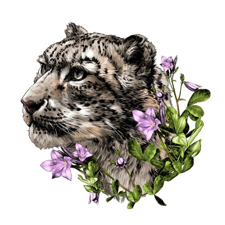 snow leopard animal head in profile close-up composition decorated with flowers and leaves of a bell, sketch vector graphics color illustration on a white background