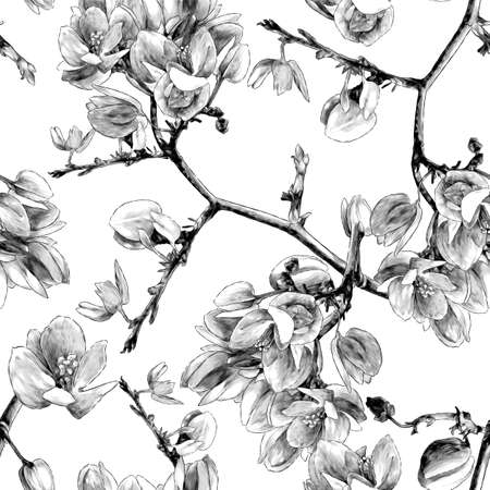 Branches of the flowering Antigonon leptopus