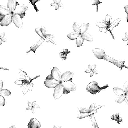 seamless pattern featuring jasmine flowers and tropical flowers, sketch vector graphics monochrome illustration on white background