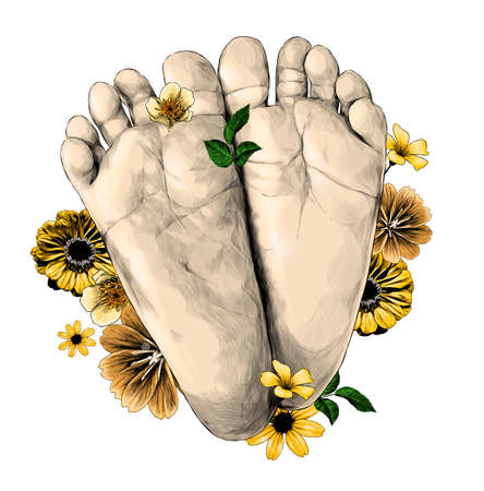 small children's feet foot forward decorated with flowers and leaves very cute, sketch vector graphics color illustration on white background Illustration