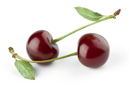 Two cherries on white background photo
