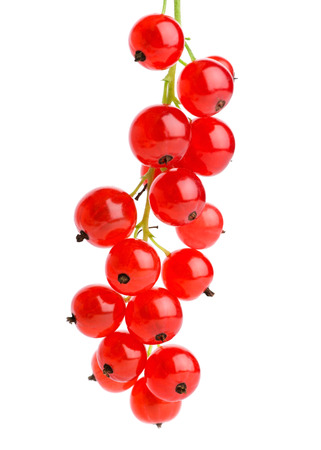currants: Red currants on white background  Stock Photo