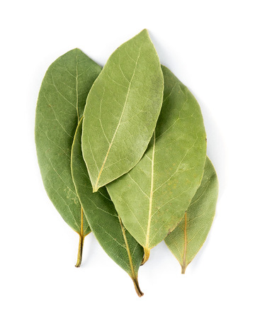 Aromatic bay leaves on white background