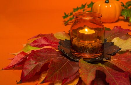 candlelit: Candle in a glass on colorful autumn leaves