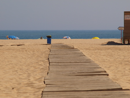 access to the beach on wooden plank