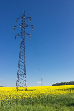 powerline: Powerline in yellow field