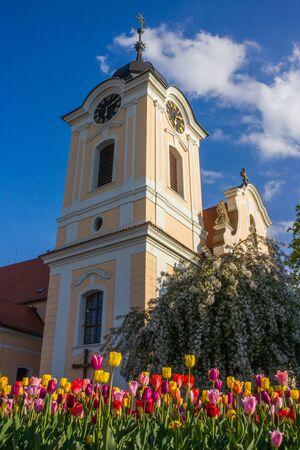 cz: Tyn nad Vltavou, Czech republic.