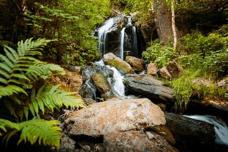 Cascade valt over bemoste rotsen in Tsjechisch bos Stockfoto