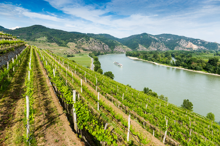 Landscape of Wachau valley, Danube river, Austria.