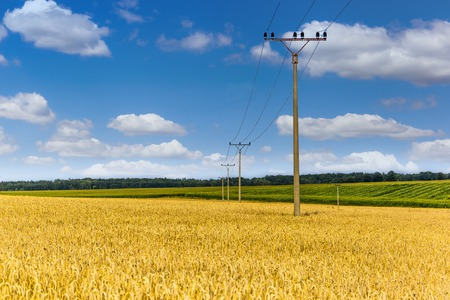Summer countryside in Czech Republic with yellow fields and blue sky. Reklamní fotografie