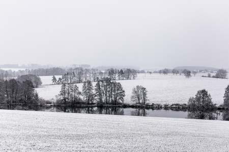 Winter landscape with white snow covered fields, trees and hedges Reklamní fotografie