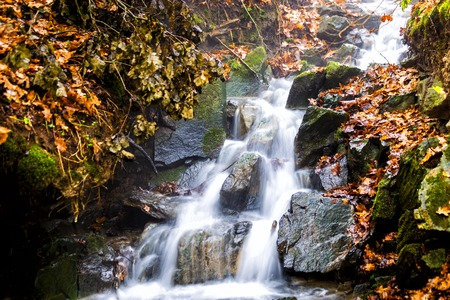 Stream with trees and rocks in mountain in Autumn. 写真素材