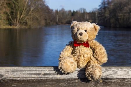 Teddy bear near partially frozen pond in winter. End of autumn. Austria.