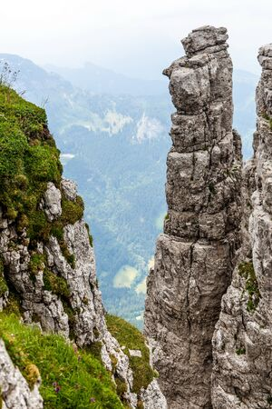 Detail rocks in Alps. Austria. 版權商用圖片