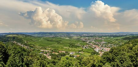 Greens and vineyards of the Wachau valley. Dramatic sky. Summer day in Lower Austria.