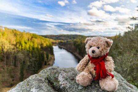 Teddy bear Dranik in autumn czech republic 版權商用圖片