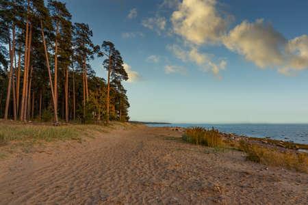 Coast of a Gulf of Finland.