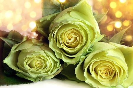 Bouquet of white roses on a bright background photo